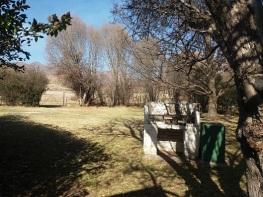 back-garden-with-braai