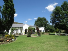 Lynettes garden